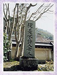 龍泉寺の写真